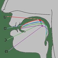 la importancia de las vocales