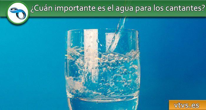 cuán importante es el agua para los cantantes